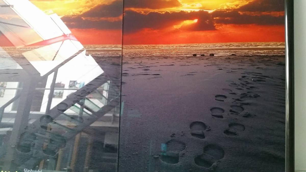 Acrylaat plexiglas plaat Tru Vue Optium Museum